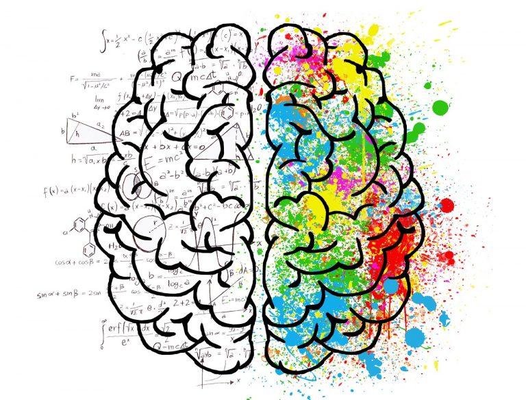 brain-768x584
